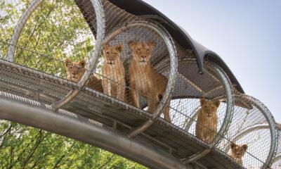 Philadelphia_zoo_reopening