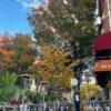 outdoor dining philly-grubhub