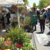 Chestnut Hill Home and Garden Festiva