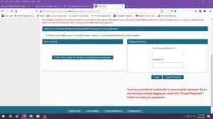 Screenshot of Colorado's PUA login screen
