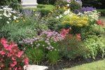 naperville-hinsdale-dupage-gardeners-gardening-service-_1098