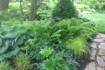naperville-hinsdale-dupage-gardeners-gardening-service-_1192