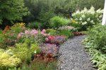 naperville-hinsdale-dupage-gardeners-gardening-service-_1217