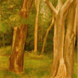 Catherine Lucas Landscape Oil sketch