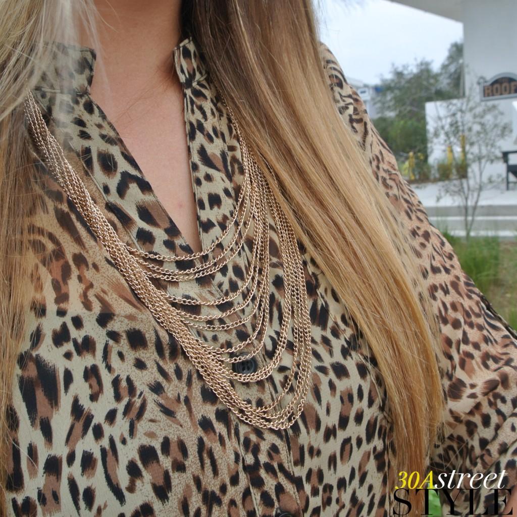 Leopard-Shaye3