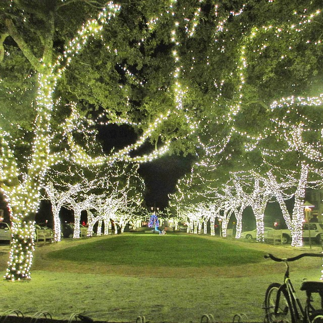 rosemary-beach-christmas-lights-north-barrett-square