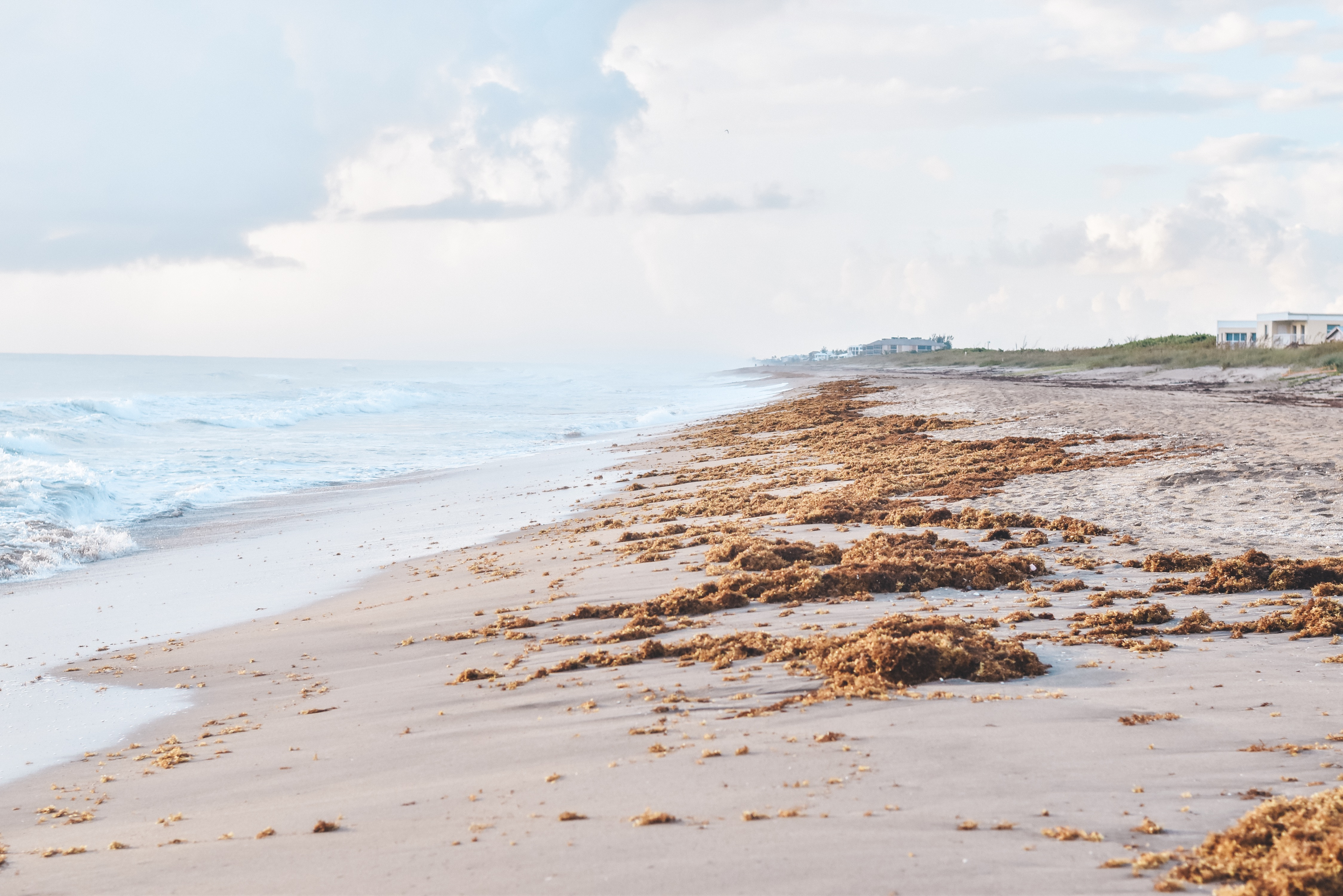 Hutchinson Shores - 30A Mama Travel - Quiet Beach