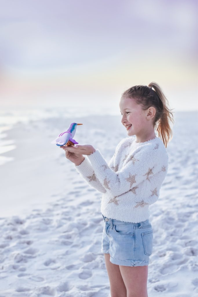 Flutter Friends Toy on the Beach 30A