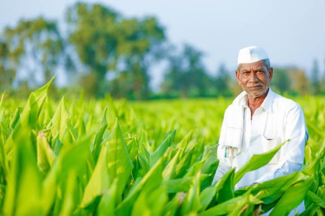 HDFC Bank rural banking news