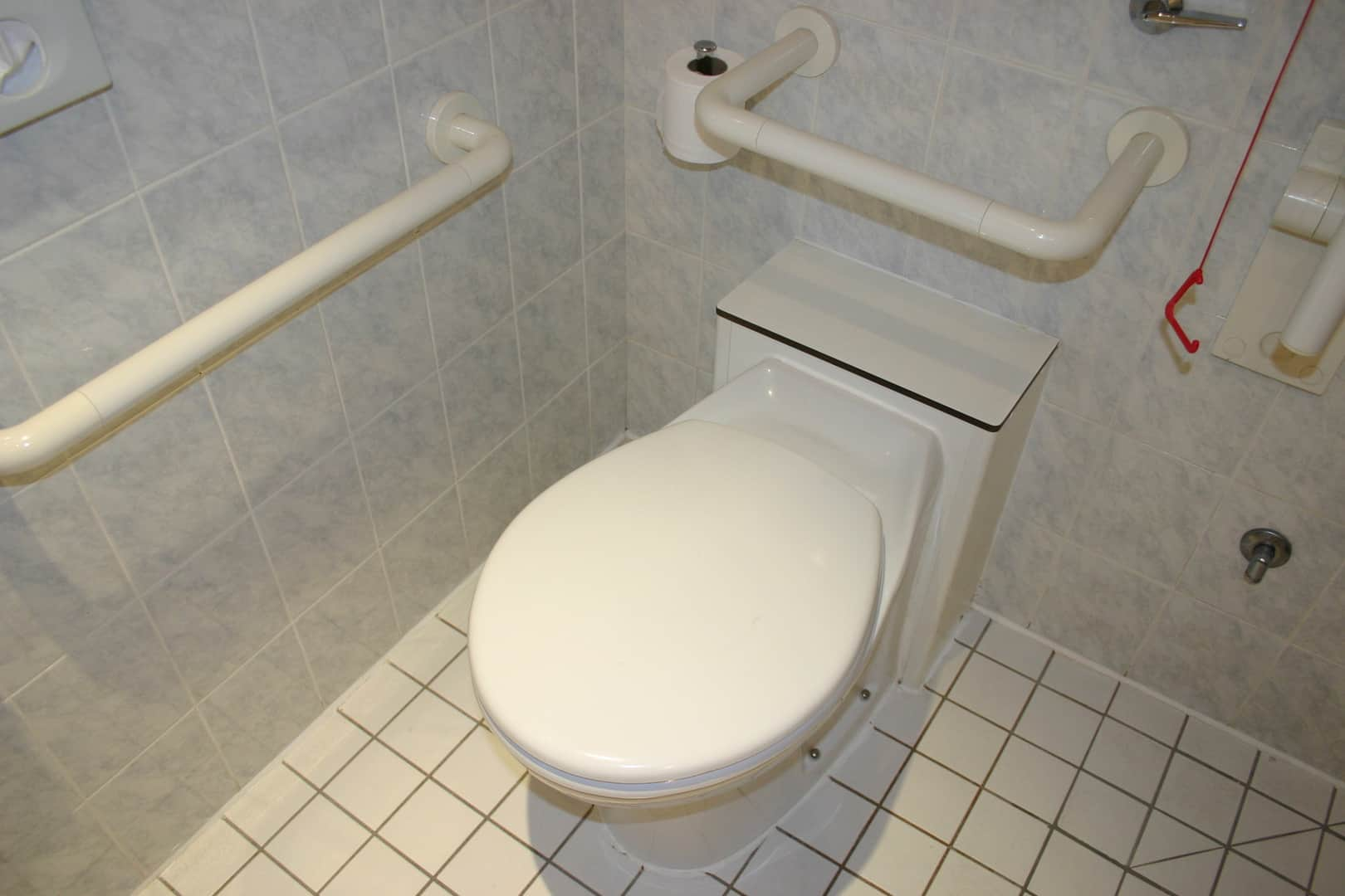 Toilet for Disabled