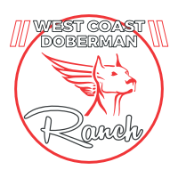 West Coast Doberman Logo