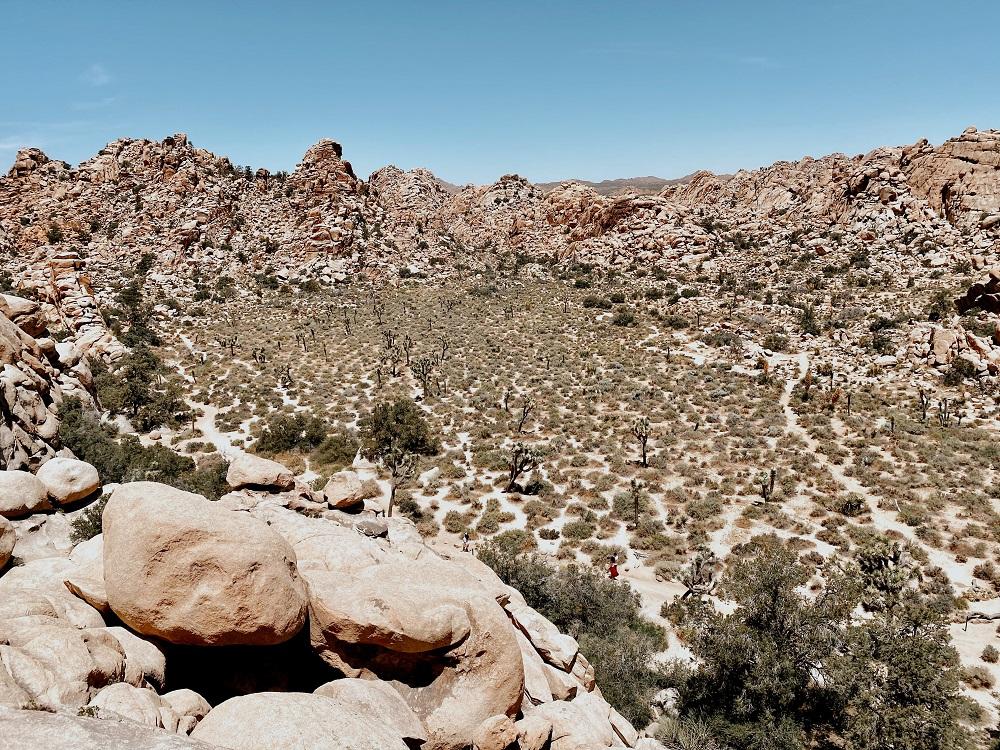 Hidden Valley Trail at Joshua Tree National Park