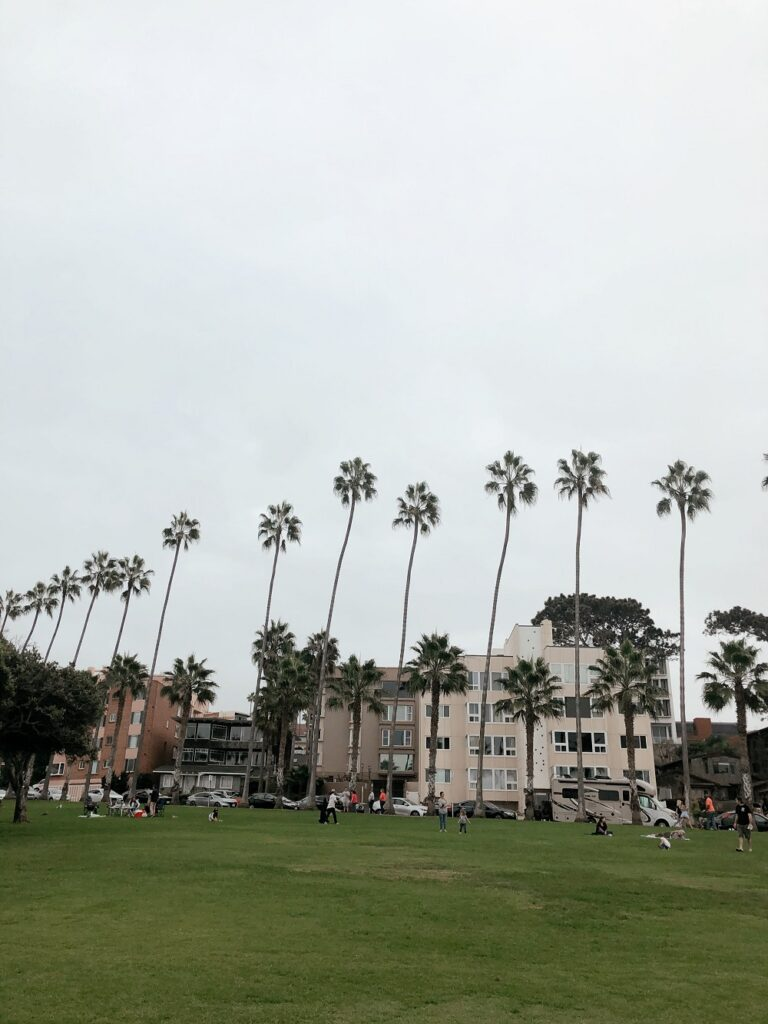 Park with palm trees in La Jolla, CA