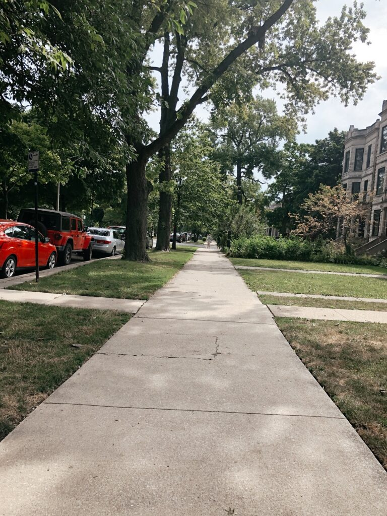 Taking a walk in Logan Square was one of the things I did in 2020
