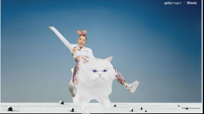 Photo of trendy female riding a white kitten.