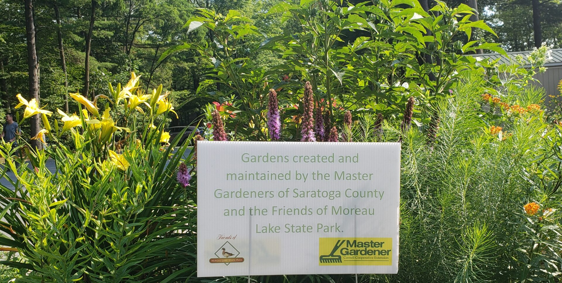 Master Gardener's beautify the park