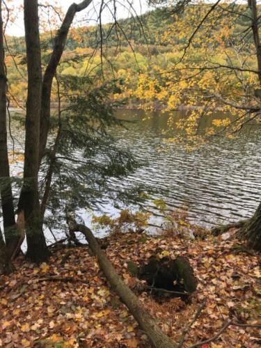 Hudson River 2 (Medium)