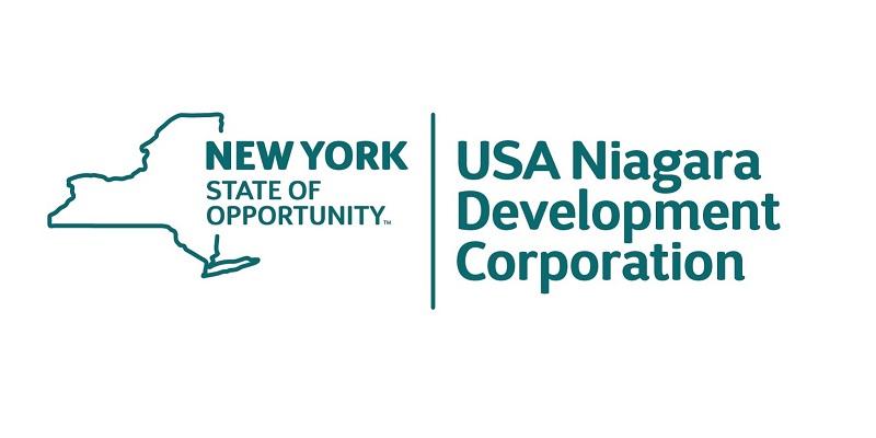 USAN 2015 Logo