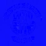 Extreme Synergy Corporation