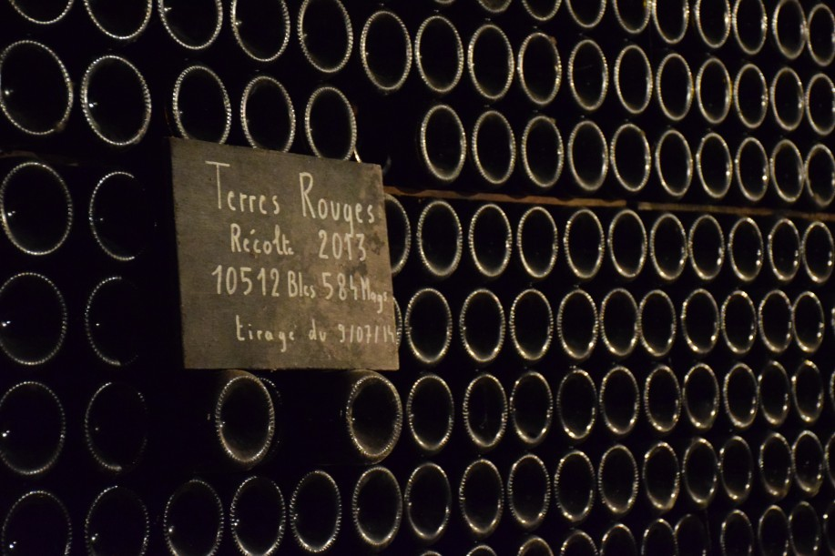 Dizy Terres Rouges vineyard of Champagne Jacquesson