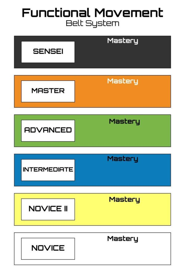 Functional Movement Belt System