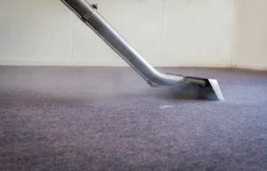 How do you treat mold under carpet