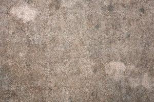 Is mold under carpet dangerous