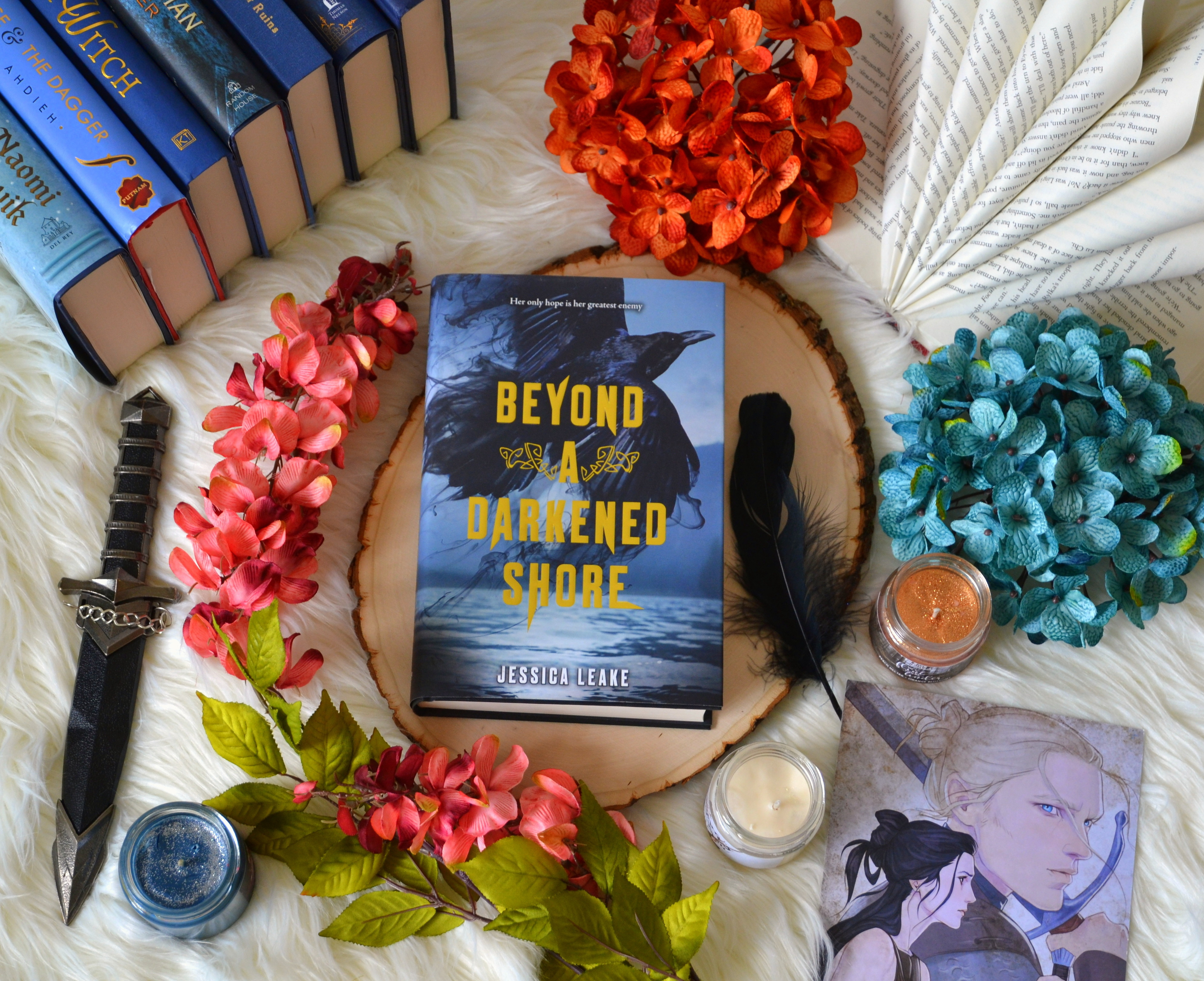 Beyond a Darkened Shore by Jessica Leake   Review