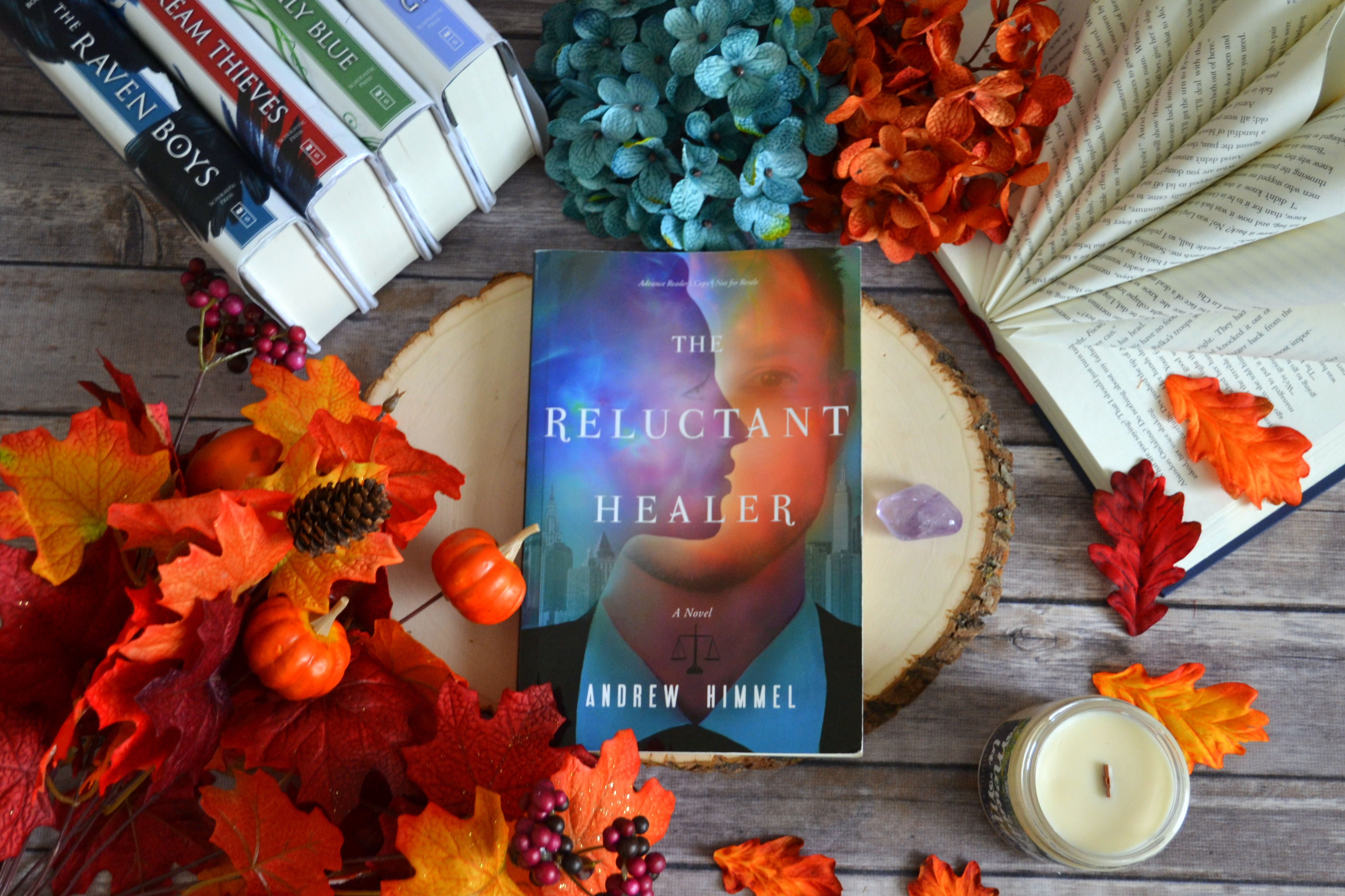 The Reluctant Healer by Andrew Himmel   ARC Review