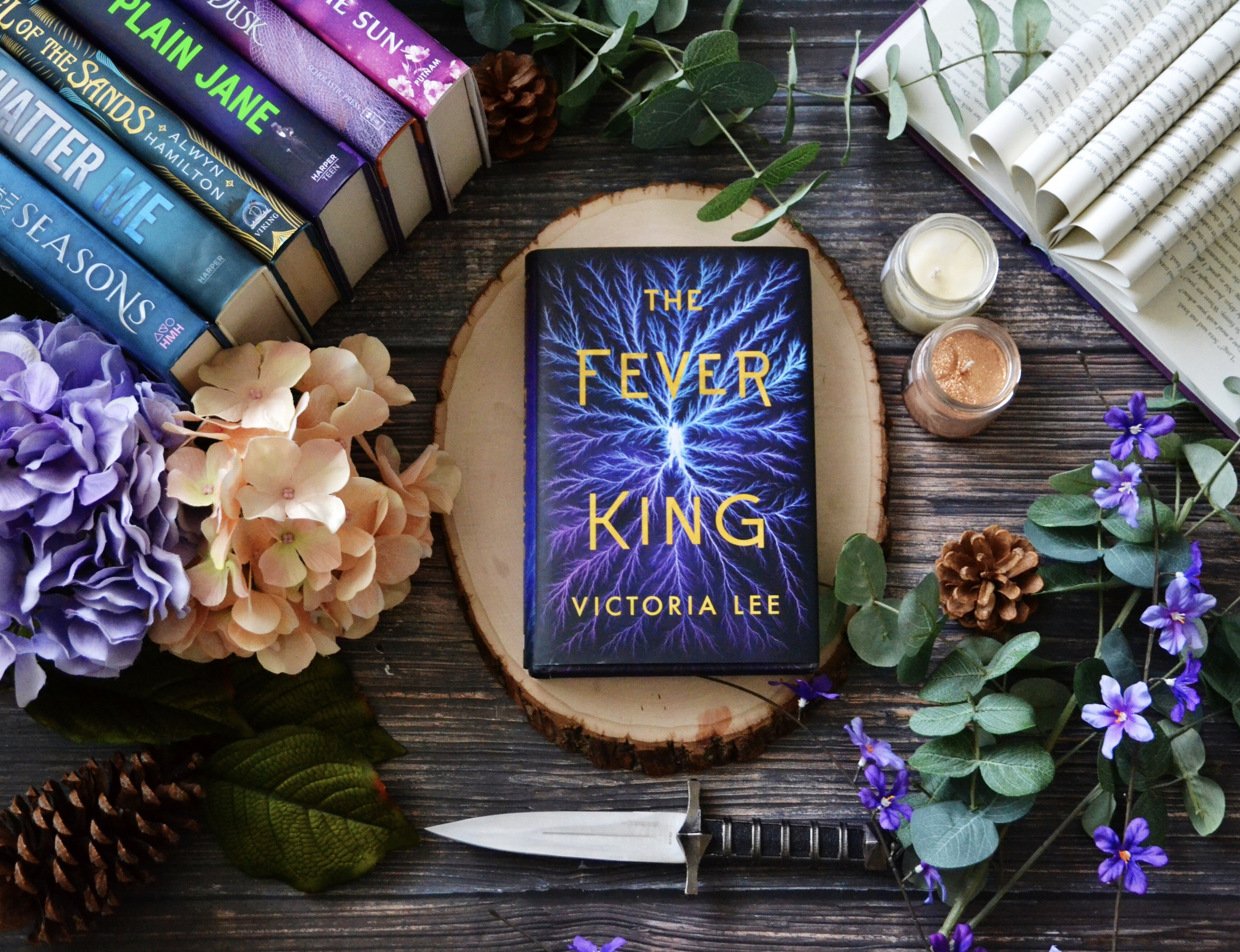 The Fever King by Victoria Lee | Spoiler Free Review