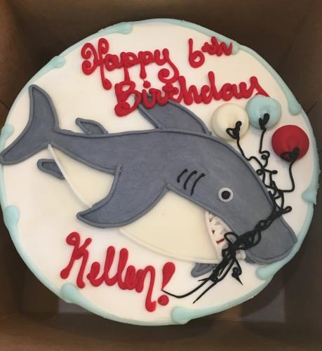 60 Shark