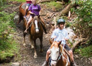 New River Gorge Cabins horseback riding