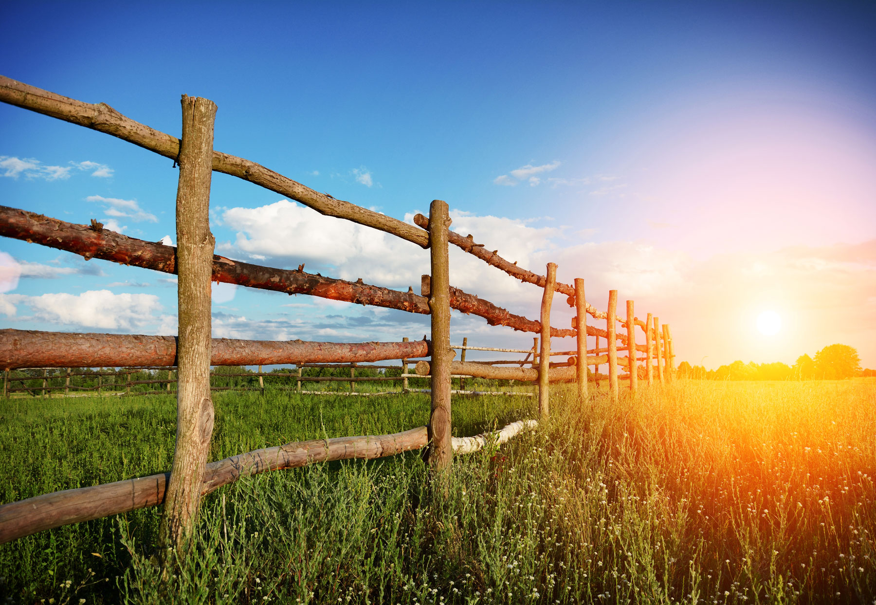 fence in the countryside at sunset