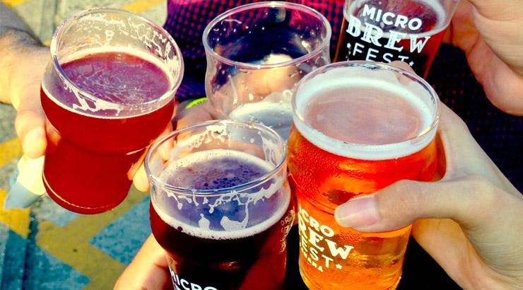 Micro Brew Fest 2015