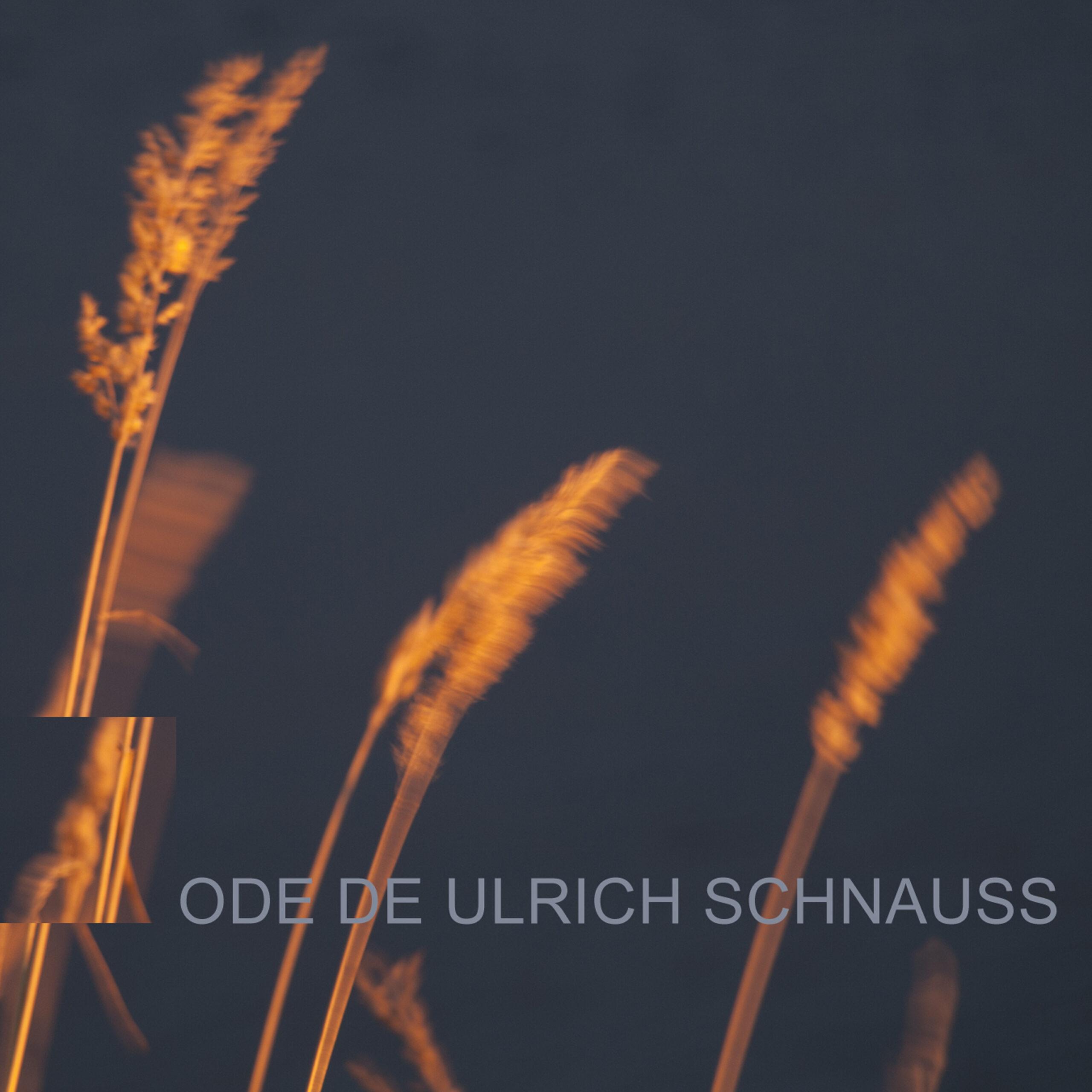 Ode de Ulrich Schnauss