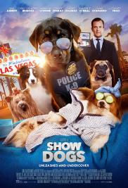 Show Dogs cover photo | Jessica Reid Fox Hair Stylist