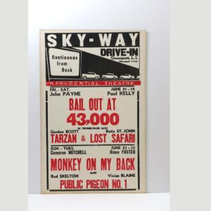 sky-way-drive-in-bail-out-at-43000
