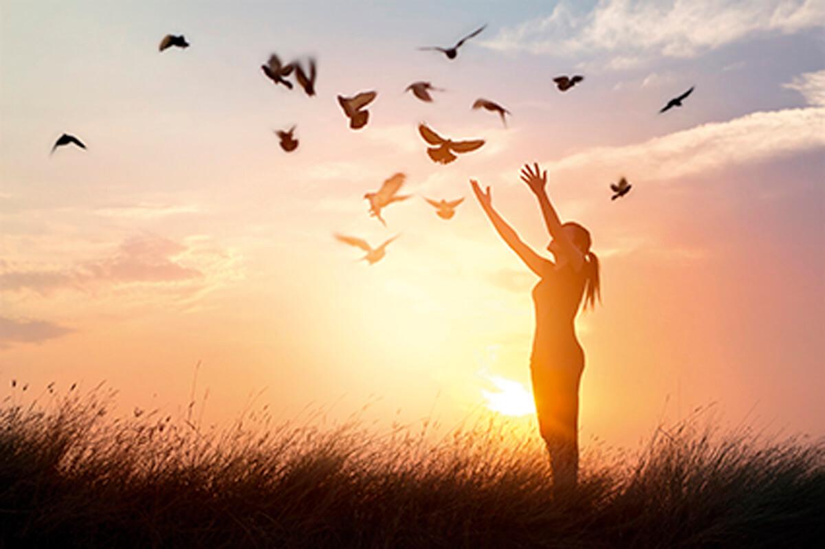 Healing after Infidelity: Partner Betrayal Trauma
