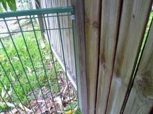 pool fence shorter than 1.2m