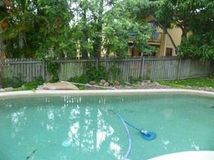 backyard pool wooden fence