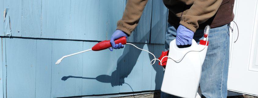 exterminator spraying pesticide on the house exterior