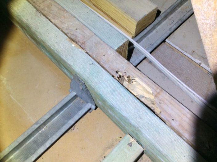 Evidence of termites to roof void timber above bathroom