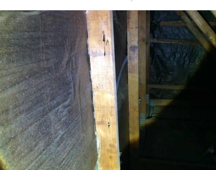 Termite damage to roof void timber cord above the kitchen