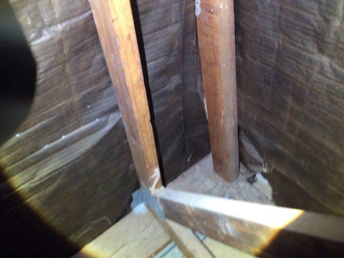 termite-mudding