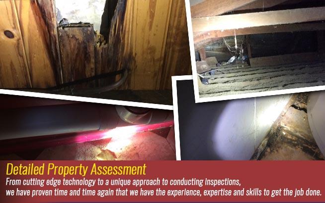 detailed-property-assessment.jpg