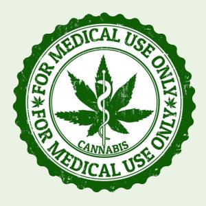 Las Vegas Medicinal Cannabis Growhouse