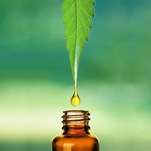 Medicinal Oil Cannaboids