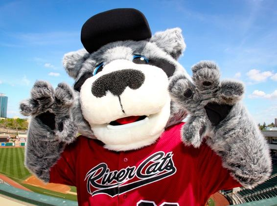Sacramento River Cats Day Sunday April 7th!