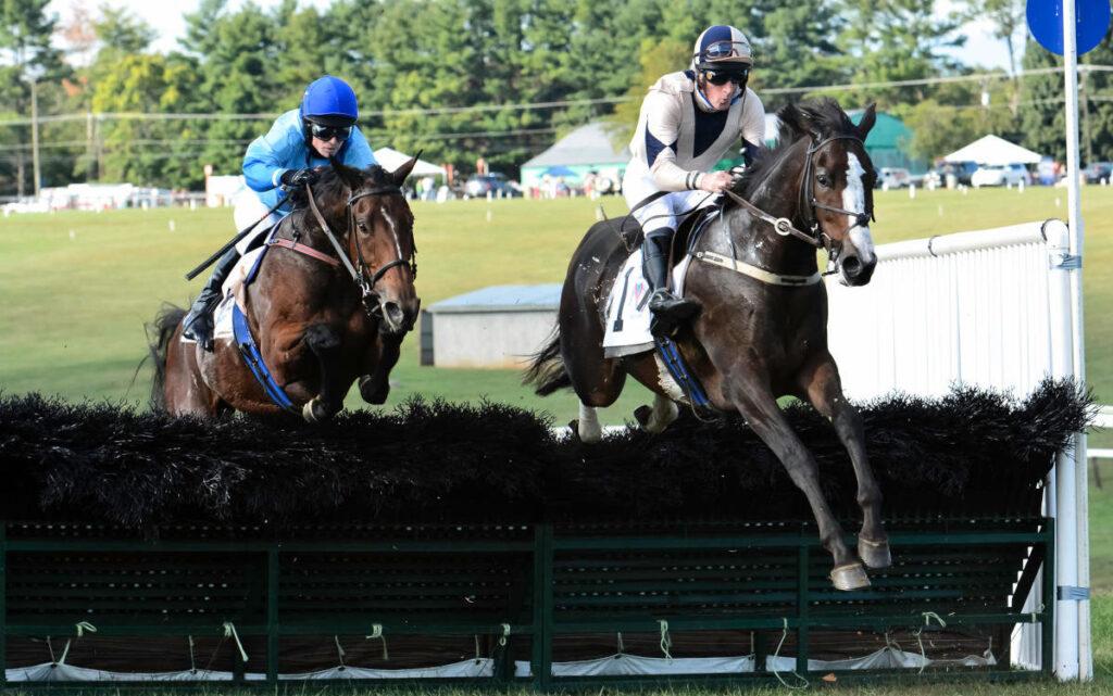 Horses racing at Foxfield