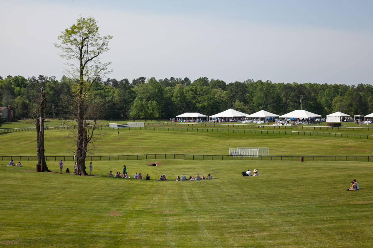View of the foxfield grounds